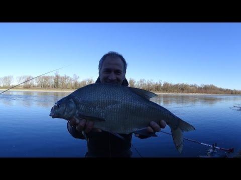 Dove e su che impigliarsi nella pesca russa di som sul lopayena