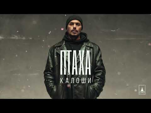 Птаха - Калоши   Official Audio