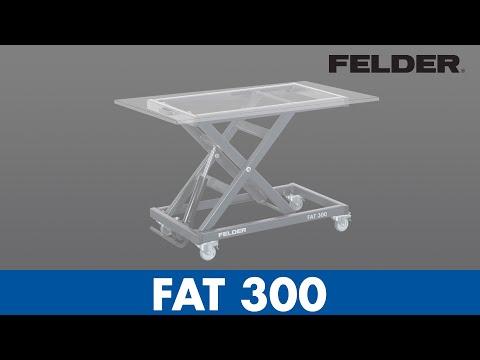 FAT 300