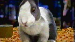 3-1-2002 WFLD commercials (part 5 of 7)