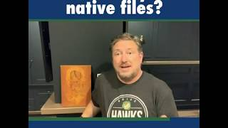 Who Owns Your Native Files?