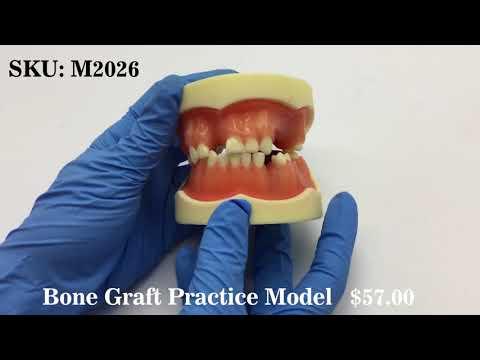 Bone Graft Practice Model