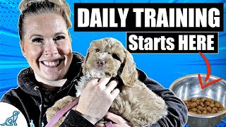 Start Every Day With THIS In Your Puppy Training Schedule