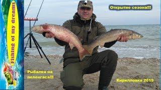 Рыбалка на азовском море с берега в июле куда поехать