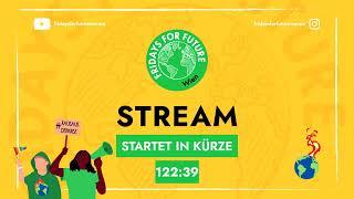 Live: Klimastreik in Wien