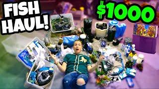 *$1000* FISH TANK Supplies Haul! 🐟(AQUARIUM Equipment UNBOXING!)