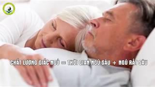 Tư Vấn Trị Dứt điểm Bệnh MẤT NGỦ Và SUY NHƯỢC CƠ THỂ   [Chữa Mất Ngủ]   Thuốc Dân Tộc