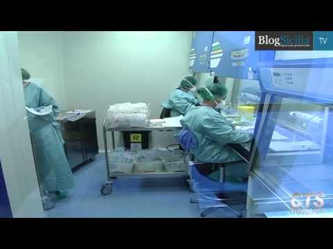 Prostata durante lorgasmo