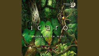 Noya Rao Icaro