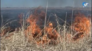 В области продолжает действовать режим повышенной пожароопасности