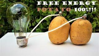 Free Energy Light Bulbs - 220v using Potato - Video Youtube