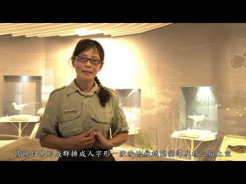 [行動解說員]墾丁國家自然公園-龍鑾潭自然中心