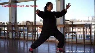 Tai Chi - Forme 24 - Style Yang 二十四式太極拳