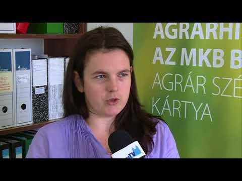 Siegen egységes párt