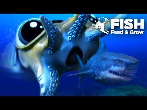 Feed and grow fish walkthrough fish eat grow big for Feed and grow fish the game
