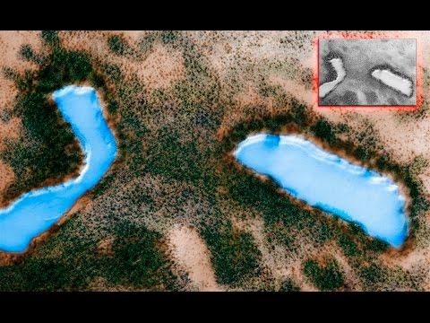 Marte Tiene Inmensos Lagos y Bosques