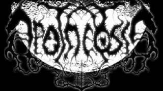Apotheosis - Total Destruction (Bathory Cover)