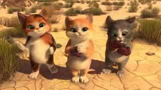 Gambar cover film kartun pendekar kucing