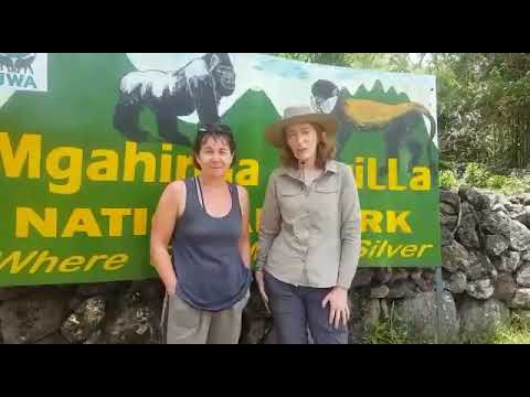 Travelers's trip testimonial