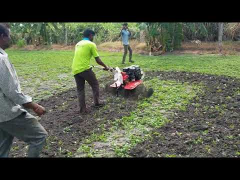 Varsha SW 524 PE Petrol Power Weeder