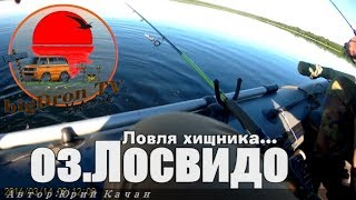 Рыбалка в витебской области озеро лосвидо