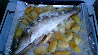Судак с картошкой запеченный в духовке со сметаной