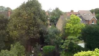 preview picture of video 'Parakeets flying low over East Molesey gardens - 1'