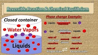 REVERSIBLE REACTION AND CHEMICAL EQUILIBRIUM MUSICAL ANIMATION   EXAMPLE OF CHEMICAL EQUILIBRIUM