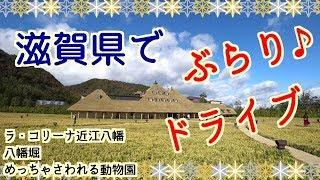 【ドライブ】滋賀でぶらり!?おすすめ観光スポット行ってきた♪