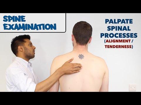 Der Schmerz des Schultergelenkes, die traditionelle Medizin