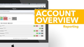 Account Overview - Reporting