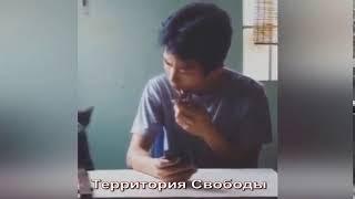 КОТ В УДАРЕ, БРО В ШОКЕ, ПРИКОЛ С ТЕЛЕФОНОМ, ЗВОНОК