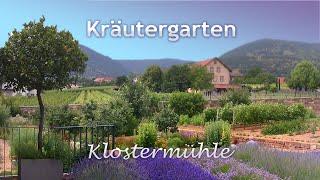 Paradies Kräutergarten