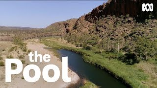 How Billabong Is Australias Original And Oldest Pool | The Pool