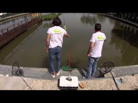 Proteina di pasta per risposte da pesca
