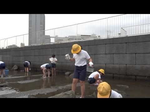 高島水際線公園 幸ヶ谷小学校