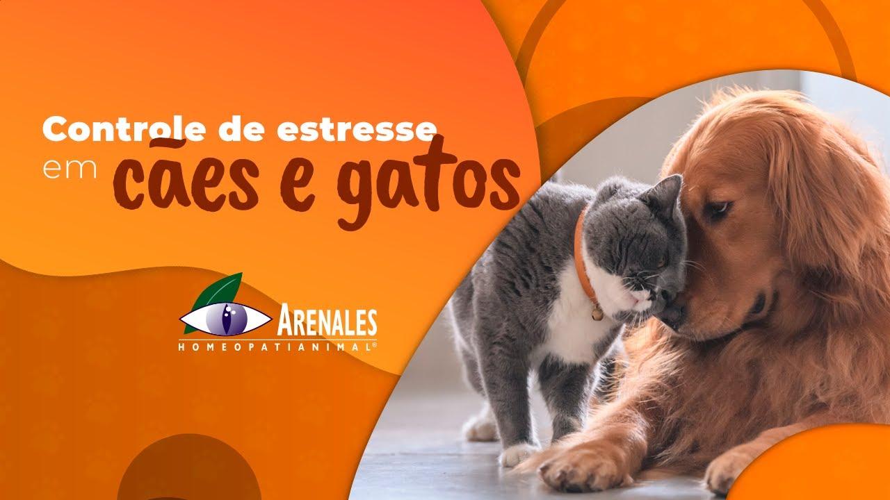 Arenales Homeopatia Animal