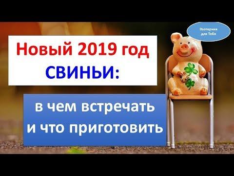 Новый 2019 год Свиньи: в чем встречать и что приготовить