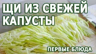 Рецепты первых блюд. Щи из свежей капусты простой рецепт приготовления