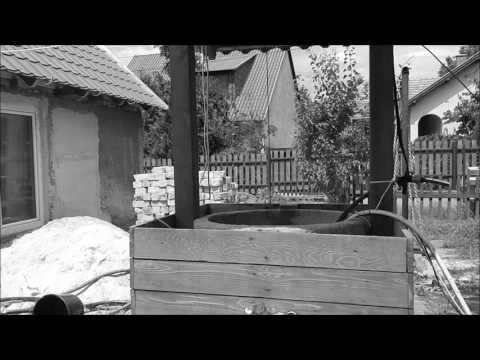 Sapka- és penészparaziták