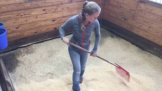 Perfect Stall Cleaning Method