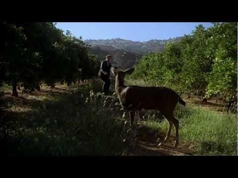 (T3) Simon Baker directing Red Moon (3x09)