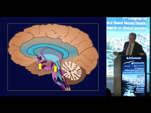 G. P. Chrousos - The biologic basis of stress and its management
