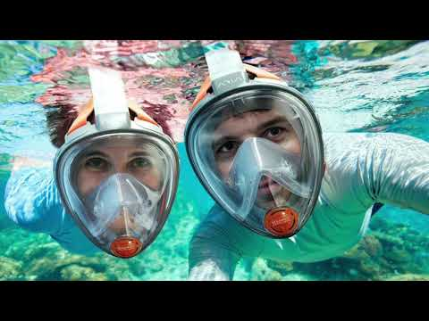 [REVIEW] Ocean Reef Aria Snorkeling Mask
