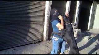 تحميل اغاني Moka Bego And DeBoo Dog موكا بيجو وديبو MP3