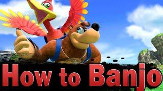 Smash Ultimate: How to play Banjo & Kazooie