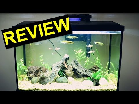 20 Gallon Top Fin Aquarium Kit Review | Tuesday Tank Reviews