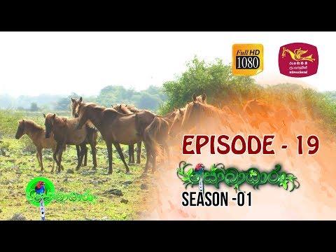 Sobadhara  | Season - 01 | Episode 19 | Sobadhara Rupavahini