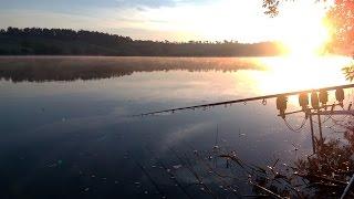 Рыбалка на карпа и амура водоем каиры 2020