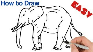 How To Draw An Elephant Easy | Animals Drawings For Beginners | Art Tutorial